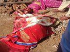 घर के पिछले हिस्से में मां के साथ मिलकर शौचालय बनवा रही थी बहू, ससुर और जेठ ने दोनों की फावड़ा मारकर कर दी हत्या रायपुर,Raipur - Dainik Bhaskar
