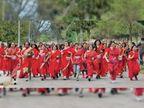 अंतरराष्ट्रीय महिला दिवस पर रन क्लब की ओर से आयोजित दि साड़ी रन में महिलाओं ने लगाई दौड़|चंडीगढ़,Chandigarh - Dainik Bhaskar