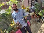 25 साल के अनिल के पास जमीन नहीं है; फिर भी खेती से लाखों रुपए कमा रहे, 50 से ज्यादा घरों में लगा चुके हैं नर्सरी|DB ओरिजिनल,DB Original - Dainik Bhaskar