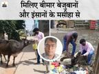 जिन जख्मों की बदबू से लोग दूर भागते हैं, उनपर मरहम लगा इंसानों और बेजुबानों को देते हैं नया जीवन|बिहार,Bihar - Dainik Bhaskar