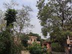 रांची में सुबह से जारी ही बादल और धूप की आंखमिचौली; शाम तक बारिश के आसार, सोमवार से साफ होगा मौसम|रांची,Ranchi - Dainik Bhaskar
