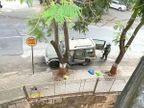 मुकेश अंबानी के घर जिलेटिन कार प्लांट करने वालों के तार गुजरात से जुड़े, 5 आरोपियों के सिम कार्ड अहमदाबाद से एक्टिव हुए थे|गुजरात,Gujarat - Dainik Bhaskar