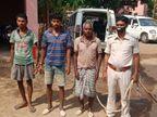 गांव के प्रधान ने पंचायत में मारने का फैसला किया, गला दबाकर हत्या कर तालाब किनारे दफना दिया शव झारखंड,Jharkhand - Dainik Bhaskar