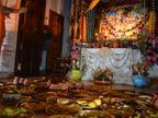 इस्कॉन भोपाल में दो दिवसीय गोर पूर्णिमा महोत्सव का आयोजन; 56 पकवानों का लगाया गया भोग|भोपाल,Bhopal - Dainik Bhaskar