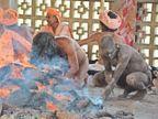 एक ही आसन पर 40 दिन की तपस्या,योगी बनने के लिए नींद भी वर्जित|रोहतक,Rohtak - Dainik Bhaskar
