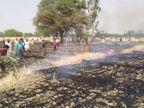 6 गांवों में दो दर्जन किसानों के खेतों में लगी आग, 50 एकड़ से ज्यादा खड़ी गेहूं की फसलें स्वाहा|सतना,Satna - Dainik Bhaskar