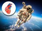 लम्बे समय तक अंतरिक्ष में रहने पर एक्सरसाइज के बावजूद दिल सिकुड़ता है, 340 दिन बिताने वाले एस्ट्रोनॉट पर हुई रिसर्च|लाइफ & साइंस,Happy Life - Dainik Bhaskar
