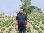 पैसे की कमी से 12वीं के बाद पढ़ाई छोड़नी पड़ी, अब मेडिसिनल प्लांट की खेती और प्रोसेसिंग से सालाना 35 लाख रुपए कमा रहे|ओरिजिनल,DB Original - Dainik Bhaskar