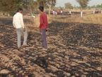 बीकानेर के बादनूं गांव में चिंगारी से फसल में लगी आग, 14 बीघा में खड़ी फसल जलकर हुई नष्ट|बीकानेर,Bikaner - Dainik Bhaskar