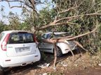 मंगलवार देर रात 11:45 पर 55 से 60 किलोमीटर प्रति घंटा की रफ्तार से हवाओं के साथ हुई तेज बारिश; तेज आंधी से कई जगह टूटकर गिरे पेड़, गाड़ियां भी हुईं क्षतिग्रस्त|चंडीगढ़,Chandigarh - Dainik Bhaskar