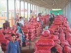 मंडी में किसानों का प्याज 7 रुपए किलो ले रहे, बाजार में भाव 20 रुपए सीकर,Sikar - Dainik Bhaskar