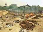 सरकारी आंकड़ों में MP में सिर्फ 27 मौतें, जबकि भोपाल में ही पहली बार 8 माह की बच्ची सहित 41 संक्रमितों का अंतिम संस्कार|भोपाल,Bhopal - Dainik Bhaskar