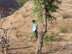 घरेलू झगड़े में पति ने पत्नी का सिर फोड़ कर मार डाला; घर से भाग 10 किमी दूर पेड़ से लगा ली फांसी; 10 साल पहले हुई थी शादी, बच्चे नहीं थे|उदयपुर,Udaipur - Dainik Bhaskar