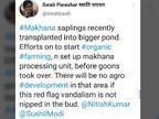 बिहार में मखाना उगाना भी कितनी बड़ी चुनौती...एक महिला प्रोफेसर ने सोशल मीडिया पर लिखा|बिहार,Bihar - Dainik Bhaskar