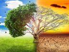 वातावरण में 300 साल की तुलना में 50% ज्यादा बढ़ी कार्बन डाइऑक्साइड, इसकी 25% मात्रा को बढ़ने में लगे थे 200 साल विदेश,International - Dainik Bhaskar
