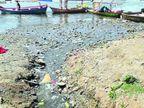 जबलपुर के ग्वारीघाट और तिलवाराघाट में नर्मदा में मिल रहे गंदे नाले, एनजीटी ने बंद करके छह सप्ताह के अंदर रिपोर्ट पेश करने का दिया आदेश|जबलपुर,Jabalpur - Dainik Bhaskar
