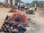 गुजरात में जामनगर के कोविड अस्पताल में इलाज के दौरान 24 घंटे में ही 120 मरीजों की मौत, 564 नए केस भी दर्ज|गुजरात,Gujarat - Dainik Bhaskar