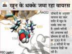 MP में वायरस के 5 नए वैरिएंट एक्टिव; यह एंटीबॉडी को कमजोर कर रहे, इसलिए लोग दोबारा संक्रमित हो रहे|इंदौर,Indore - Dainik Bhaskar