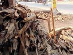 अंतिम संस्कार के लिए बंगाल से लाई जाएगी लकड़ियां, क्योंकि लाशें बढ़ी तो चिता के सौदागरों ने बढ़ा दिए लकड़ियों के दाम|बिहार,Bihar - Dainik Bhaskar