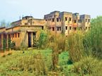 10 साल में 1897 करोड़ के 629 अस्पताल बने, पर खुले नहीं, क्योंकि डॉक्टर-नर्सों की भर्ती ही नहीं हुई|रांची,Ranchi - Dainik Bhaskar