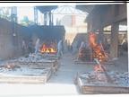 1287 नए संक्रमित कारोबारी गर्ग, खन्ना में 30 वर्षीय युवक की मौत|लुधियाना,Ludhiana - Dainik Bhaskar