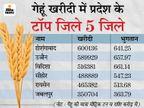 56 हजार किसानों से 6 लाख मीट्रिक गेहूं खरीदा, दूसरे नंबर पर उज्जैन और तीसरे पर विदिशा|होशंगाबाद,Hoshangabad - Dainik Bhaskar