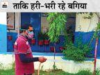 कैंपस में लगे पेड़-पौधों की सांसें बची रहें, इसलिए सरकारी छुट्टी के बाद भी 20 किलोमीटर का सफर कर रोज आते हैं स्कूल|उदयपुर,Udaipur - Dainik Bhaskar