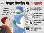 भारत बायोटेक ने कहा- इसकी एक खुराक संक्रमण रोकने में सक्षम, इससे ट्रांसमिशन चेन टूटेगी|देश,National - Dainik Bhaskar
