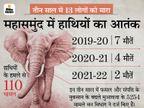 बेटा चीखकर कहता रहा- बचाओ..बचाओ, पापा भागो हाथी आ रहा है; मगर पिता भाग न सका, हाथी ने सूंड से उठाकर पटका, घटनास्थल पर ही तोड़ा दम छत्तीसगढ़,Chhattisgarh - Dainik Bhaskar
