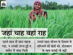 10वीं पास महिला तीन एकड़ जमीन पर ऑर्गेनिक खेती से सालाना 2 लाख रु. कमारही मुनाफा, एक हजार महिलाओं को रोजगार से भी जोड़ा|DB ओरिजिनल,DB Original - Dainik Bhaskar