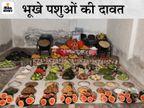 युवाओं ने जेब खर्च तो दिव्यांग ने 2 माह की पेंशन दी, मिठाइयों की जगह 56 तरह के फल-सब्जियों का चढ़ाया भोग, फिर गांव के हर पशु को खिलाया|बीकानेर,Bikaner - Dainik Bhaskar
