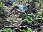 सुरक्षा बलों ने एक नक्सली को मार गिराया, सर्च ऑपरेशन के दौरान हुईमुठभेड़|झारखंड,Jharkhand - Dainik Bhaskar