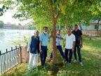 इन्हें यूं ही नहीं कहते पेड़ों का डॉक्टर, 500 पौधों में से 350 को बनाया पेड़, रोजाना टीम करती हैं 3 घंटे सार-संभाल, तब पौधें बने पेड़ पाली,Pali - Dainik Bhaskar