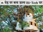 उदयपुर में आईआईटीयन ने बिना टहनी काटे आम के पेड़ पर चार मंजिला घर बनाया, इसकी सीढ़ियां भी रिमोट से चलती हैं उदयपुर,Udaipur - Dainik Bhaskar