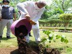 पौधे लगाओ और पैसे कमाओ, वृक्षारोपणकरने वालों को तीन साल तक मिलेगी 10 हजार रुपए प्रति एकड़ के हिसाब से प्रोत्साहन राशि|रायपुर,Raipur - Dainik Bhaskar