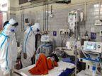 रीवा जिला में 1 जून से 6 जून के बीच में आएं 62 पॉजिटिव मरीज, एक्टिव केस सिर्फ 87 बचे|रीवा,Rewa - Dainik Bhaskar