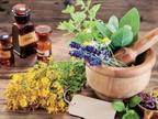 सदी के अंत तक 30% से अधिक स्थानीय बोलियां खत्म होंगी, इससे औषधीय पौधों का ज्ञान खतरे में|विदेश,International - Dainik Bhaskar