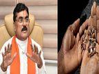 नकली बीज मामले में खंडवा के 5 अफसर सस्पेंड; बीज माफिया व डीडीए पर सस्पेंस खंडवा,Khandwa - Dainik Bhaskar