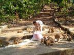 पुलिस कांस्टेबल राजेश की एक आवाज पर दौड़े आते हैं सैकड़ों बंदर, लॉकडाउन में कुदरगढ़ मंदिर बंद हुआ तो खुद के खर्च पर खाना खिलाते हैं|छत्तीसगढ़,Chhattisgarh - Dainik Bhaskar