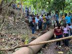 जंगल के रास्ते महिलाओं और बच्चों के साथ झरने में नहाने गए थे पर्यटक, पुलिस पहुंची तो मची भगदड़, 20 का किया गया चालान|छत्तीसगढ़,Chhattisgarh - Dainik Bhaskar