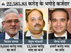 नीरव मोदी, मेहुल चौकसी और विजय माल्या की जब्त संपत्ति ED केंद्र और बैंकों को देगी; 41% कर्ज वसूली की उम्मीद बिजनेस,Business - Money Bhaskar