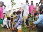 रीवा पुलिस लाइन के सामुदायिक भवन में रोपे गए 100 फलदार व छायादार पौधे, 400 वृक्ष अभी और लगाने का लक्ष्य|रीवा,Rewa - Money Bhaskar