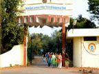 रीवा जिले में आपराधिक प्रकरण वालों को कॉलेज में नहीं मिलेगा दाखिला, गलत जानकारी दी तो प्रवेश हो जाएगा निरस्त|रीवा,Rewa - Money Bhaskar