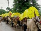 दंतेवाड़ा में कटेकल्याण से कुआकोंडा तक 40 किमी में निकलेगी रैली, पारंपरिक वेशभूषा में होंगे सभी; देवगुड़ी के लिए होगा भूमिपूजन|जगदलपुर,Jagdalpur - Money Bhaskar