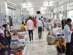 रीवा में अस्पतालों में बढ़ी डेंगू मरीजों की संख्या, 8 माह में 17 और 15 दिन में 12 मरीज आए सामने, 2 लोगों ने इलाज के दौरान तोड़ा दम रीवा,Rewa - Money Bhaskar