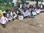किसानों ने कलेक्ट्रेट के गेट पर दिया धरना, एसडीएम को हटाने के लिए सौंपा ज्ञापन|अशोकनगर,Ashoknagar - Money Bhaskar