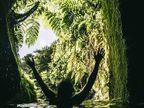 PHOTOS: असे आहे या नैसर्गिक सौंदर्याने भरलेल्या बेटावरील जीवन, नुकतेच समोर आलेत PHOTOS| - Divya Marathi