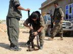 ISIS विरोधात दोन हात करत आहेत या कुर्दिश रणरागिण्या, पाहा PHOTOS|विदेश,International - Divya Marathi