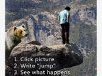 WhatsApp Funny: हुंडा मागताच वधूने दिला प्रसाद, पाहा हे फोटो आणि मनसोक्त हसा  - Divya Marathi