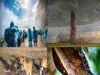 PHOTOS: नॅशनल जिओग्रॉफिकच्या कसोटीवर खरी उतरलेली निवडक निसर्गचित्रे|विदेश,International - Divya Marathi